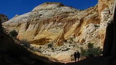 Cottonwood (Dru!) Tags: usa silhouette utah spring ut sandstone desert hiking canyon hike wash cottonwood hikers fold capitolreef capitolreefnationalpark utahtrip coloradoplateau waterpocket