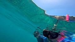 See There (minimi007) Tags: sea green water outdoors hawaii us underwater diving maui scubadiving lanai watersport gopro goprohero snorkeln gopro4 gopro4black