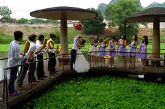 L9811542 (hanson chou) Tags: nanning guangxi liuzhou