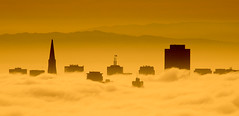 SF Skyline Peaking Through (tryggphoto) Tags: sanfrancisco california city orange silhouette yellow fog skyline clouds skyscrapers