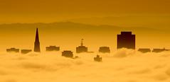 SF Skyline Peaking Through (tryggphoto) Tags: sanfrancisco skyline fog clouds orange yellow city skyscrapers california silhouette diamondclassphotographer flickrdiamond bestcapturesaoi
