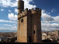 Torre de la Atalaya (Asun Idoate) Tags: torre medieval castillo atalaya olite nafarroa