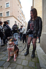 Undead dog (Red Cathedral is alive) Tags: brussels car blood cosplay o zombie bruxelles eerie convention gore horror undead grime zombies oo brussel larp livingdead blooddonor rhesus bifff zombiewalk warandepark zombieparade thewalkingdead a parcroyal eventcoverage aztektv zombieolympics zombifff