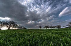 Gimme rain .... (Ralf Pelkmann) Tags: new blue light sky food storm tree green nature contrast grey countryside spring nikon day hessen seasons dynamic angle wide scenic dramatic fresh wetterau 14mm d810
