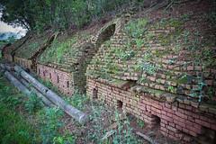 GTJ-2016-0419-25 (goteamjosh) Tags: brick abandoned hsinchu taiwan urbanexploration  kiln  taoyuan   guanxi longtan brickkiln    hoffmannkiln