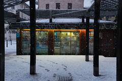 Snowing in Trento (albcomo) Tags: city travel winter people bw streets travelling art monochrome architecture youth composition freedom artist cityscape colours humanity surrealism details streetphotography documentary minimal muse adventure urbanexploration trento fujifilm snowing trentino humans mart reportage urbex xseries rovereto youngphotographer x100t