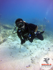Scuba Dive in Key Largo-April 2016-9 (Squalo Divers) Tags: usa divers key florida scuba diving padi ssi largo squalo