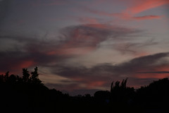 Red (Images by Jeff - from the sea) Tags: pink blue trees sunset red clouds twilight nikon dusk australia bluesky april nikkor pinksunset bundaberg redsunset blackcloud d5500 18140mm nikkor18140mm