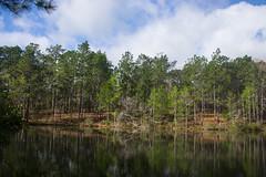 DSC_2769 (Bob Carlson) Tags: park state falling waters