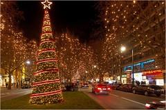 Ku'damm (Thomas W. Berlin) Tags: berlin weihnachten olympus kudamm stern beleuchtung charlottenburg lichterketten 2015 mft weihnachtsbeleuchtung nachtaufnahmen microfourthirds omdem5 ©thowe62