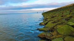 Nordstrand Husum , fujifilm x10 Beach #cool#photo#nice#water#waves#fhre zu Pellworm# Blende 4.0 Belichtungsdauer1/550#ohne Blitz#weissabgleich automatisch #brennweite :7.1mm ISO 100.                             Diesmal bin ich an der Nordsee .#no Filter (luca_sachs) Tags: life colour beautiful rock stone skyline strand wow wonderful lens landscape freedom see coast boat photo amazing nice wasser exposure wasserfall outdoor capecod himmel wolke super tagged northsea automatic fujifilm kliff ufer truro camogli landschaft nordsee perfekt almeria welle fhre kamera pellworm larga stockphoto remarkable goodwork bucht x10 fokus stockphotography ozean coastguardbeach bestphoto noth ilovethisphoto coolshot chatchycolors felsformation filmisnotdead photoquality sonice heiter coloury hafenviertel impressivepicture blushandbottlegreen nichtmanuell amazeshot morgensamstrand sharpnessphoto