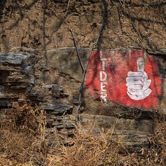 Day 267. It's about time I posted a political painting. These signs are all over rocks and walls down here. Also, made it 23 miles yesterday and should do 22 today after crossing into El Salvador. Two days in and I've kept pace to Costa Rica. #theworldwal