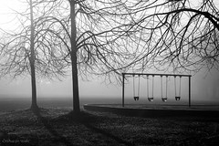 let it shine on  you (bluechameleon) Tags: trees winter blackandwhite bw nature fog vancouver moody shadows empty stanleypark swingset lonely emptiness bluechameleon artlibre sharonwish bluechameleonphotography