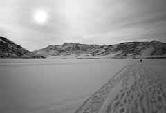 Makeshift Valley (JasonCameron) Tags: winter bw white lake snow black water monochrome creek fun mono frozen utah play over reservoir deer trail