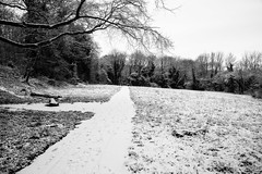 Cold Path (Exposed Photographer) Tags: blackandwhite white snow black cold home monochrome canon town frozen woods frost snowy path cinematic hertfordshire baldock 5dmk3