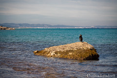 2016-01-31_651 (talentfrei79) Tags: winter espaa canon mar spain mediterraneo enero espana invierno inverno formentera islas spanien mediterrneo januar gennaio baleares balearen balears 2016 mittelmeer illes 50d pityusen
