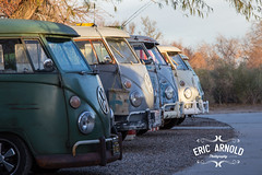 Vintage Transporter Owners Line Up (Eric Arnold Photography) Tags: camp arizona lake bus classic buses vw vintage volkswagen january az havasu vans van camper lakehavasucity campers 2016 busesbythebridge busesbythebridgexx busesbythebridge20