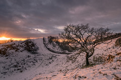 Late Afternoon Warmth (.Brian Kerr Photography.) Tags: winter sunset snow cold availablelight sony northumberland hadrianswall walltowncrags briankerrphotography briankerrphoto sonypro sonyuk wwwbriankerrphotographycom a7rii