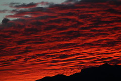 Sunset 1 31 16 #60 (Az Skies Photography) Tags: sunset red arizona sky orange cloud sun black rio yellow set skyline clouds canon skyscape eos rebel gold golden twilight dusk january salmon az rico 31 nightfall 2016 arizonasky arizonasunset 13116 riorico rioricoaz t2i arizonaskyline canoneosrebelt2i eosrebelt2i arizonaskyscape 1312016 january312016