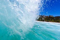 NBSurf_DY_2016_01_31_706.jpg (Neil Banek) Tags: surf sydney freshwater deewhy northernbeaches