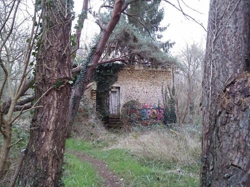 bois Livry-sur-Seine-006