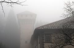 DSC_0526_M (GiacomoMaria  ') Tags: abbey fog toscana nebbia abbazia vallombrosa pivi reggello