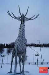 Почти ЭВД, или как мы в Нижний Новгород ездили
