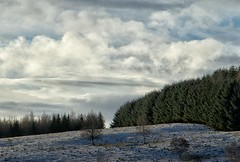 Ominous Sky (Lynne Mitchell) Tags: trees snow clouds scotland view aberdeenshire hill