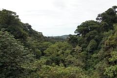Monteverde, Costa Rica, January 2016