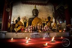 Buddha Wat Pha Lat