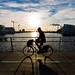 Copenhagen bikes - Across Bryggebroen