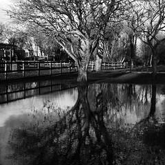 Plas-crug, Aberystwyth (Rhisiart Hincks) Tags: winter bw reflection wales square hiver cymru aberystwyth ur ceredigion dour plascrug uisge adlewyrchiad duagwyn gaeaf islada kembre negu paysdegalles galesherria zuribeltz réflet dŵr gwennhadu achuimrigh faileas sgwâr geamhradh adsked karrez gouañv karratu cearnagach dubhsgeal