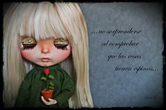 Frases de Lovely Doll