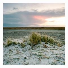 Mklppen - Kodak Ektar 100 (magnus.joensson) Tags: seascape beach zeiss sunrise landscape coast kodak sweden outdoor south swedish hasselblad filter shore 100 60mm warming cfi distagon 500cm ektar 81b mklppen maklappen
