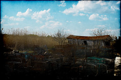 The Crab Shack (Groovyal) Tags: fish water photography bay crab shore shack boar crabber thecrabshack groovyal baymen