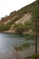 Green Loch (foggybummer (Keith)) Tags: green pine scree steep slopes glenmore greenloch ryvoan caledonianforest