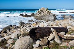 Point Pinos (nickmickolas) Tags: california ca pacificgrove pointpinos 2016