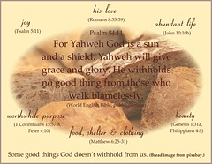 Good things Psalm 84:11 bread (Martin LaBar) Tags: love poster bread promise godslove goodthings psalm8411