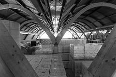 Love in architecture (undeklinable) Tags: blackandwhite blackwhite spain heart wine interior warehouse shape cellar arquitecture protos peafiel