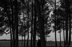 Escondido. (wolvelopez) Tags: longexposure trees sky people blackandwhite blancoynegro nature clouds forest person hand among darkne