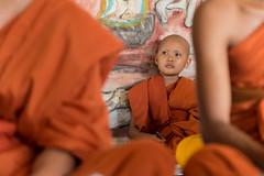 Cambodia 2015 (Marianne Zumbrunn) Tags: orange color colour lunch temple nikon cambodia kambodscha monk buddhism tamron depth f28 battambang schrfentiefe mnch 2470mm 2015 buddhismus d610 tiefenschrfe tamron2470mm nikond610