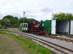 P1050718 (Hampton & Kempton Waterworks Railway.) Tags: loop devon galaday 2015 darent