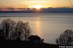 Die Sonne schickt einen letzten Gru ber die Wolken (77PS) Tags: sunset sonnenuntergang pfnder bodensee lochau uppereastside abenddmmerung vorarlberg lakeconstance unterhaggen