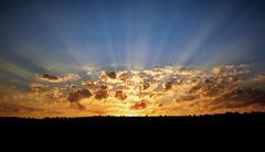 Sunrise (Moldova) (petikova) Tags: blue sun sunrise landscape moldova