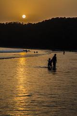 Goa Sunset (Jackson Pollard) Tags: travel sunset sea portrait lighthouse india abandoned dogs animal sunrise landscape vines ruins asia fort goa beaches arabian shelter derelict aguada