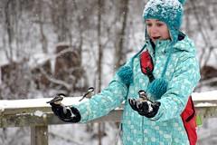 Friendly Forest Friends (Joseph Hollick) Tags: bird burlington burlingtonontario chickadee snow eyeonthearea