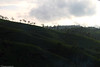 Tea Mountains جبال الشاي (mosa3ad alshetwi) Tags: travel sky tree green nature photo flickr candy tea mount srilanka cupe سفر سماء جبال جو كيف سحاب نعناع شجر أخضر طبيعه الشاي سياحه غائم فثش متموج mosa3ad متدرج