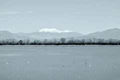 Lakescape by ioanna papanikolaou CSC_0163 (joanna papanikolaou) Tags: trees blackandwhite lake water monochrome landscape outdoors scenery view horizon scenic nobody scene greece scape waterscape lakescape lakescenery