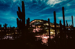 Light Show (LXG_Photos) Tags: light film phoenix night desert eos3 desertbotanicalgarden ektar100 brucemunro