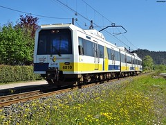 3810 (firedmanager) Tags: train tren caf cantabria narrowgauge ferrocarril renfe trena feve automotor 3800 vaestrecha ferrocarrilesdevaestrecha
